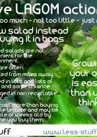 grow salad all year live lagom