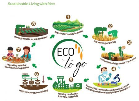 eco-to-go rice hisk cup